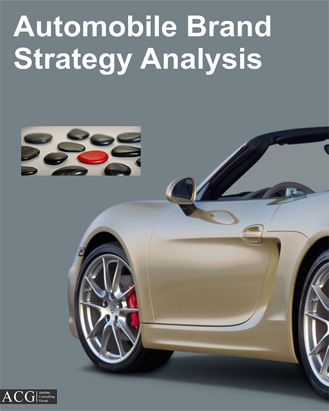 Automobile Brand Strategy Analysis