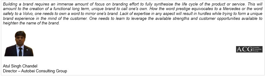 Global Automobile Brand Strategy Report