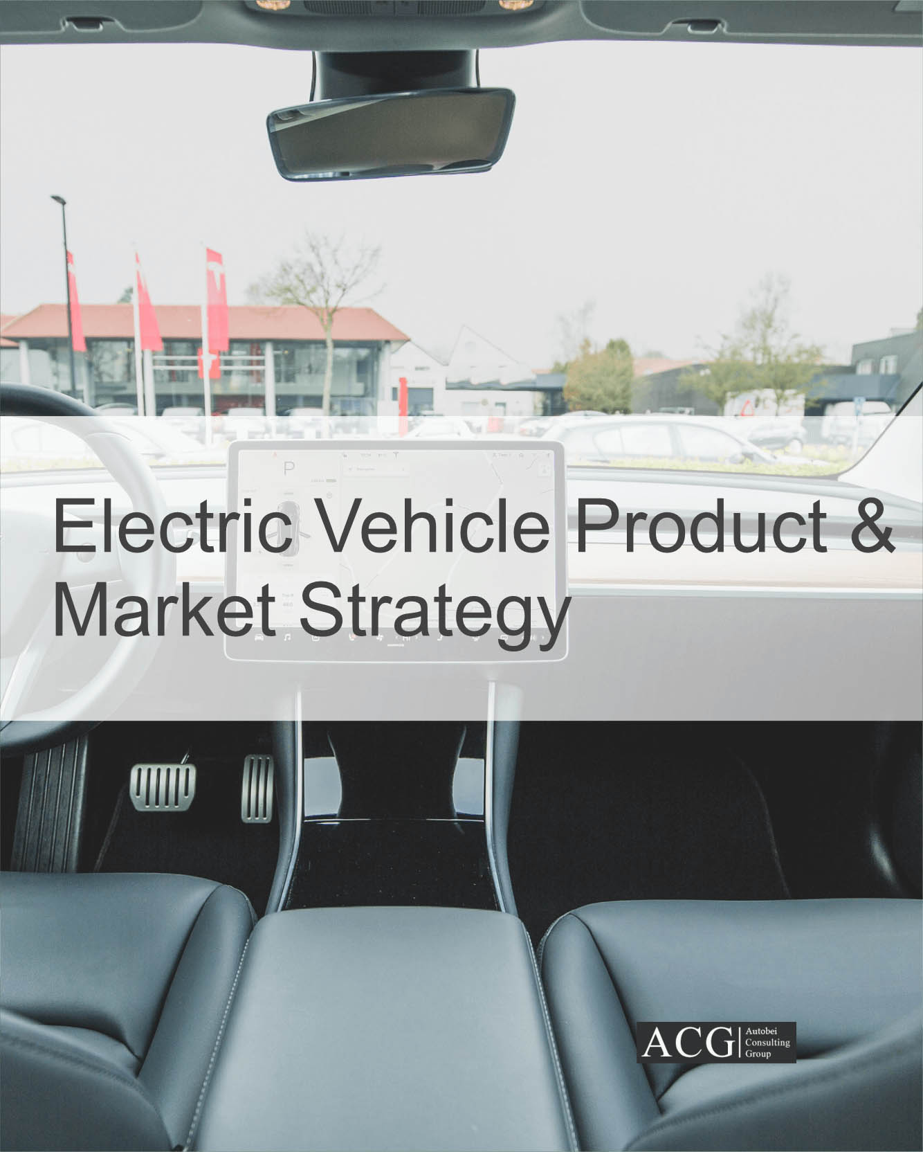 Electric Vehicle Strategy Analysis