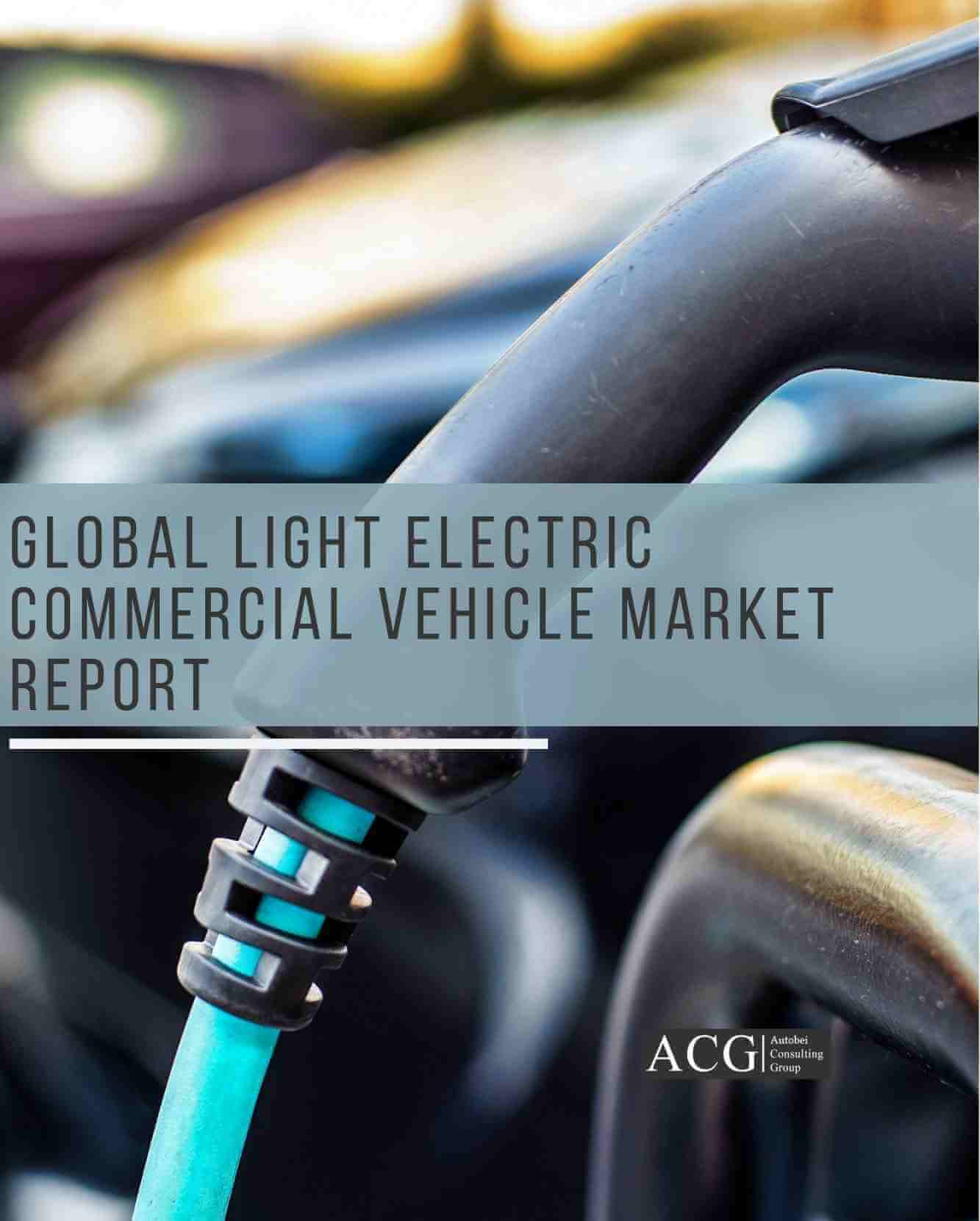 Global Light Electric Commercial Vehicle Market Report