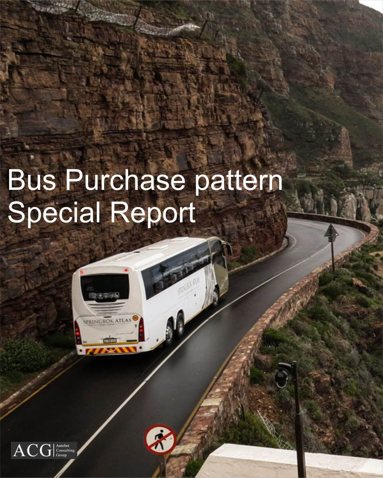 Bus Purchase pattern Report of Indian Market